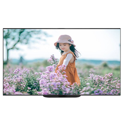 ANDROID TIVI OLED SONY 65 INCHES 65A9G (2020)
