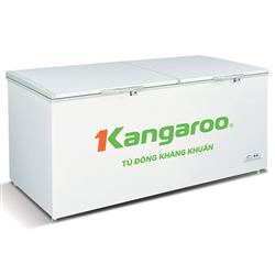 TỦ ĐÔNG KANGAROO 809 LÍT KG809C1 ĐỒNG (R600A)